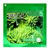 法国娇兰螺旋藻美白补水淡色面贴膜