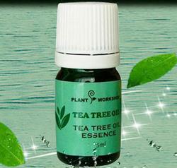植物工坊茶树精油