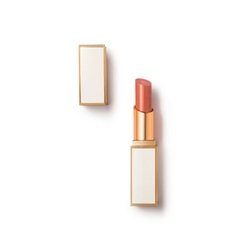 汤姆·福特2016夏季限量版白管夹心唇膏